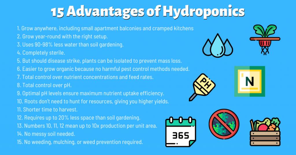 15 advantages of hydroponics