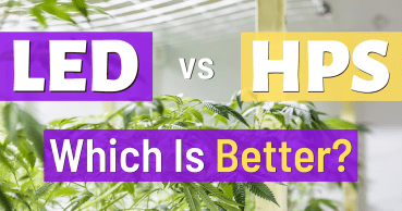 led vs hps grow lights