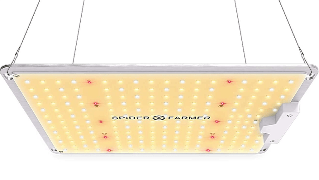 spider farm sf-1000 led grow light