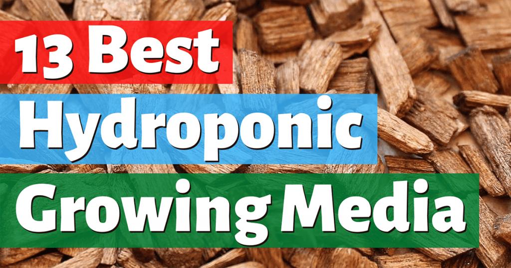 best hydroponic growing media