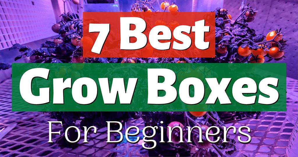 best grow box for beginners