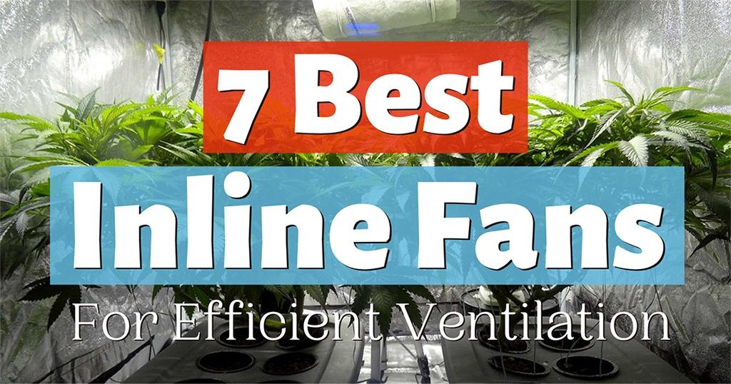 best inline fan