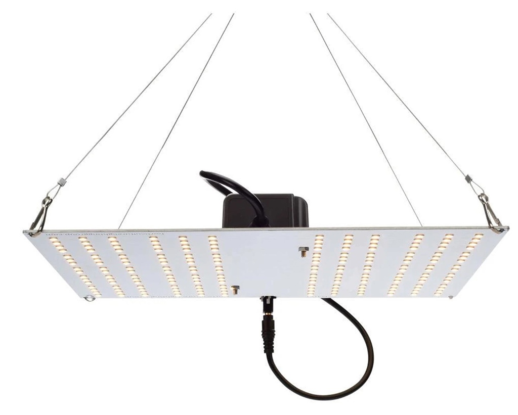 HLG 100 V2 LED Grow Light