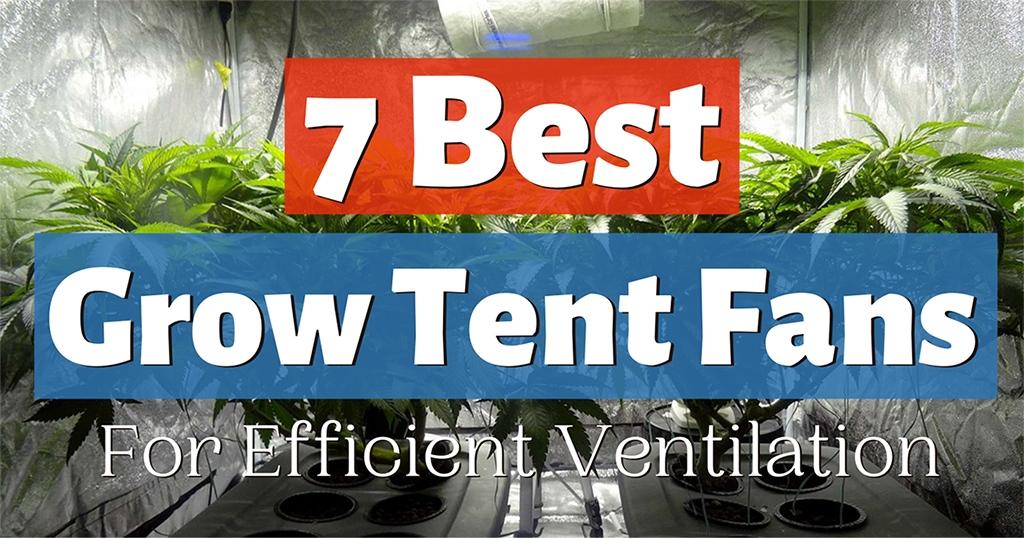 best grow tent fan