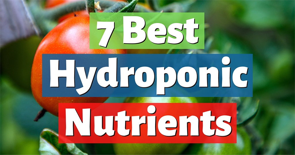 best hydroponic nutrients